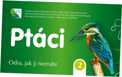 cards_bird
