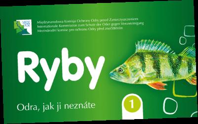 cards_fish